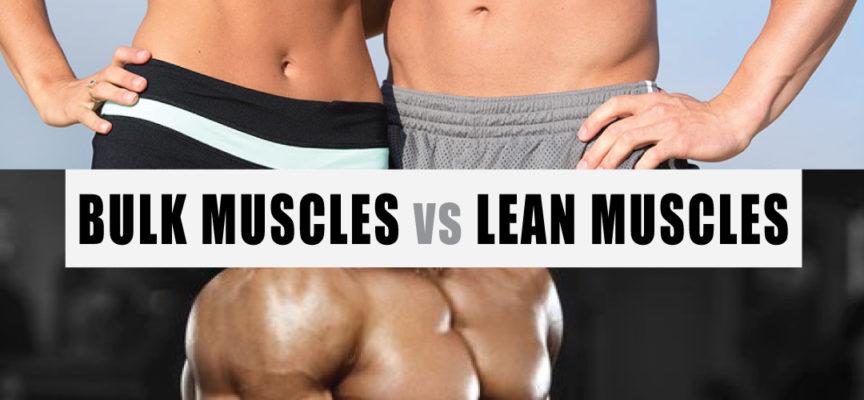 Bulk Muscles vs Lean Muscles