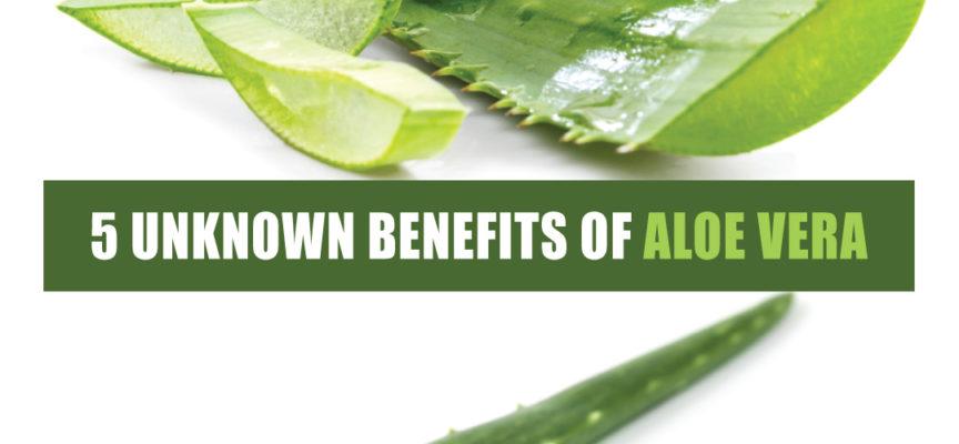 5 UNKNOWN BENEFITS OF ALOE VERA