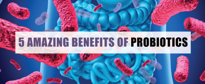 5 AMAZING BENEFITS OF PROBIOTICS