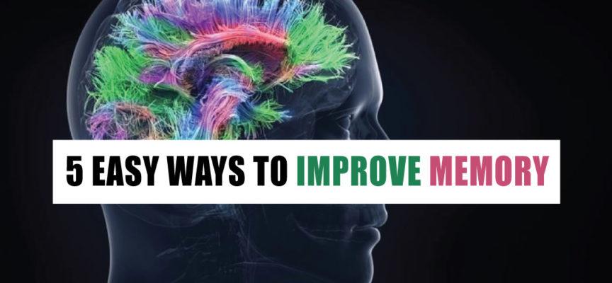 5 EASY WAYS TO IMPROVE MEMORY